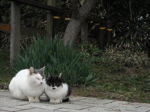 Kouyoukaishi_010