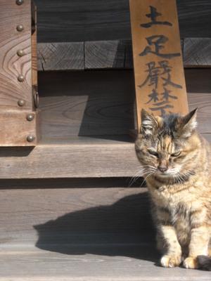 Akihukasi_003