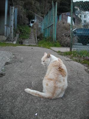 2010nennmatu_069