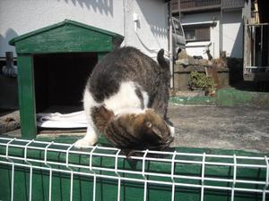 Hisakama_003
